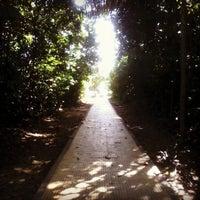 Das Foto wurde bei UFAM - Universidade Federal do Amazonas von luc am 4/27/2013 aufgenommen