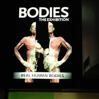 2/11/2013 tarihinde Yoko S.ziyaretçi tarafından BODIES...The Exhibition'de çekilen fotoğraf