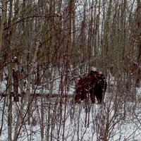 Photo taken at Blackfoot Recreation by Eric P. on 2/3/2013