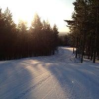 3/10/2013에 Андрей Х.님이 ГЛК Гора Пильная에서 찍은 사진