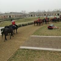 4/21/2013 tarihinde Anastasia M.ziyaretçi tarafından 天津环亚国际马球会 • Tianjin Goldin Metropolitan Polo Club'de çekilen fotoğraf