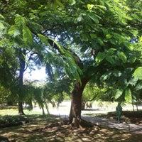 Foto tirada no(a) Parque Moinhos de Vento (Parcão) por Magno D. em 1/27/2013