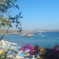 Photo taken at Portofino Hotel & Beach by Sena E. on 8/25/2013