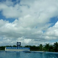 Photo taken at Dolphin Maroma By Dolphin Discovery by 2011/2014 on 1/3/2016