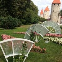 Photo taken at Tallinna Lillefestival by Irina on 7/29/2013