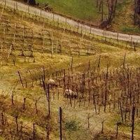 "Foto diambil di Polisena ""L'altro Agriturismo"" oleh Alex B. pada 12/29/2013"