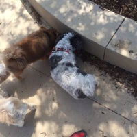 Photo taken at Newport Beach Dog Park by Chris S. on 3/22/2014