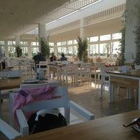 5/5/2013 tarihinde Merkez T.ziyaretçi tarafından Piknik'de çekilen fotoğraf