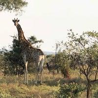Photo taken at Horseback-africa by Sal G. on 5/2/2018