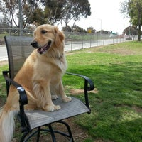 Photo taken at Costa Mesa Bark Park by Steve M. on 4/23/2014