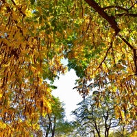 Photo taken at Friedenspark by Andreas S. on 10/31/2016