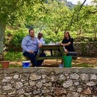Photo taken at ceviz altı kendin pişir kendinye by İ𝓫𝓻𝓪𝓱𝓲𝓶 . on 5/1/2018
