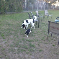 Photo taken at Cabrini Dog Park by Emily O. on 2/19/2013
