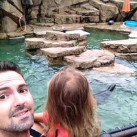 Photo taken at Como Zoo - Seal House And Show by Nate F. on 8/29/2014