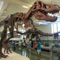 Foto tomada en Museo Americano de Historia Natural por joy m. el 7/11/2013