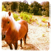 Photo taken at Agriturismo resort Belmonte Vacanze by Lauro L. on 7/21/2013