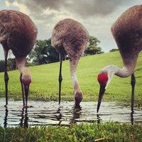 Photo taken at PGA National Resort & Spa by Alyena on 7/29/2013