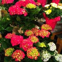 Photo taken at Hen House Market by Brenda V. on 4/3/2014