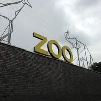 Das Foto wurde bei Kölner Zoo von Matthias K. am 7/11/2013 aufgenommen