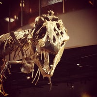 Photo taken at Perot Museum of Nature and Science by Michael S. on 11/30/2012