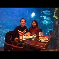 Photo prise au Denver Downtown Aquarium Restaurant par Elisha S. le2/15/2018