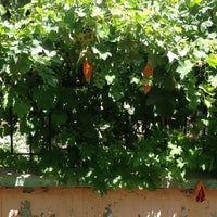 Photo taken at My Summer House by Duygu duragan on 7/25/2013