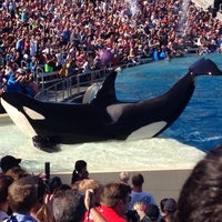 Photo taken at SeaWorld San Diego by Денис Л. on 10/8/2013