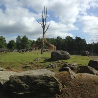 Photo taken at Borås Djurpark by Robert K. on 7/18/2013