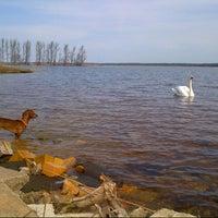 Photo taken at Jadviga's Windsurfing Spot by Tatjana K. on 3/30/2014