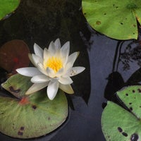 Photo taken at North Carolina Botanical Gardens by Leta C. on 9/14/2012