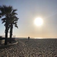 Martha S Hermosa Beach