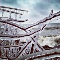 12/11/2013 tarihinde Tim D.ziyaretçi tarafından Scarborough Bluffs'de çekilen fotoğraf