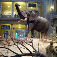 Photo taken at National Museum of Natural History by Andrew M. on 2/16/2013