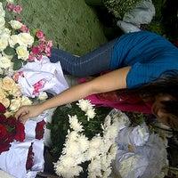 Photo taken at Pasar Burung Kota Malang by evi c. on 11/9/2012