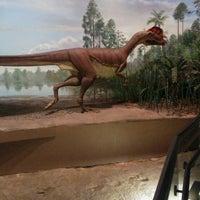 Photo taken at Dinosaur State Park by John D. on 6/14/2014