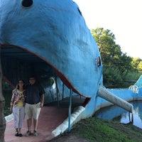 9/2/2016 tarihinde Caitlin C.ziyaretçi tarafından Blue Whale'de çekilen fotoğraf