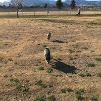 Barkin Basin Dog Park