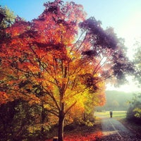 Photo taken at East Falls Church Park by Shaun D. on 10/18/2012