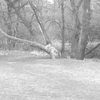 Photo taken at Fairview Park by Brian P. on 4/7/2013