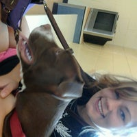 Photo taken at Michigan Humane Society by Courtney J. on 8/16/2012