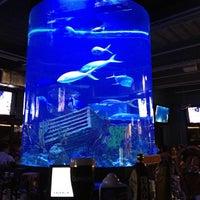 Photo taken at Dive Bar by Katrina M. on 6/11/2013