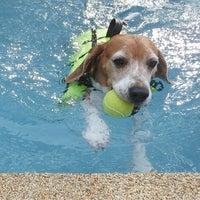 Foto tomada en Sa-by-jai Dog Swimming Pool por Vicky Onthira B. el 9/13/2014