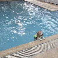 Foto tomada en Sa-by-jai Dog Swimming Pool por Vicky Onthira B. el 7/26/2014