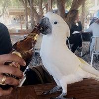 Photo taken at Payam Beach Restaurant by Tuğçe C. on 11/12/2016