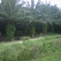 Photo taken at Sime Darby Tenom by Diana R. on 1/28/2013
