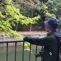 Photo taken at 山科疏水 妙応寺付近 by 未穂子 越. on 4/9/2018