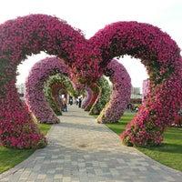 Photo taken at Dubai Miracle Garden by Chami R. on 2/28/2013