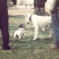 Photo taken at LAPD Lawn Dog Park by Nina K. on 3/22/2013
