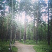 Photo taken at Кленовая Аллея В Сосновке by Фёдор Р. on 6/7/2014