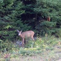 Photo taken at Parc Mont-Tremblant Sect. De la Diable by Mila S. on 9/7/2014
